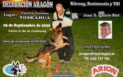 Abierta Inscripciones Delegación Aragón Körung-AD-TSI