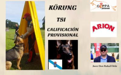 Abierta Inscripciones Delegación Galicia Körung-AD-TSI